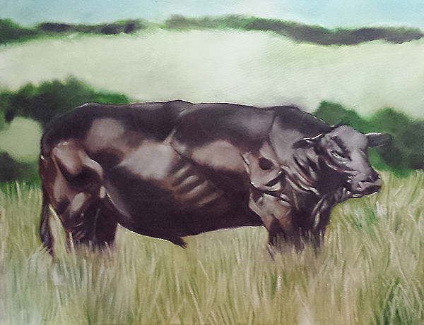 One-Bull-Oil-Painting-2008